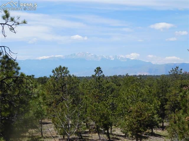 MLS# 6950030 - 3 - 7985 Burgess Road, Colorado Springs, CO 80908