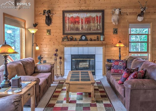 MLS# 6192788 - 13 - 409 Pike View Drive, Divide, CO 80814