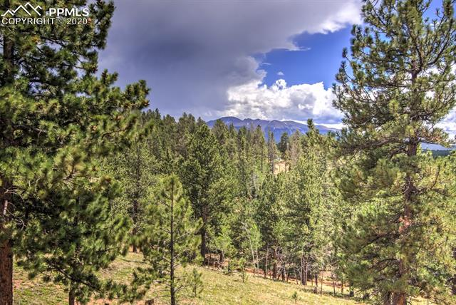 MLS# 6192788 - 39 - 409 Pike View Drive, Divide, CO 80814