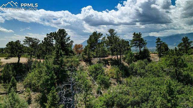 MLS# 1603070 - 33 - 1735 Palm Drive, Colorado Springs, CO 80918