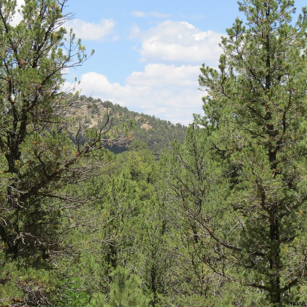 MLS# 61103 - 14 - TBD Holmes Road  #Lot 5, Cotopaxi, CO 81223