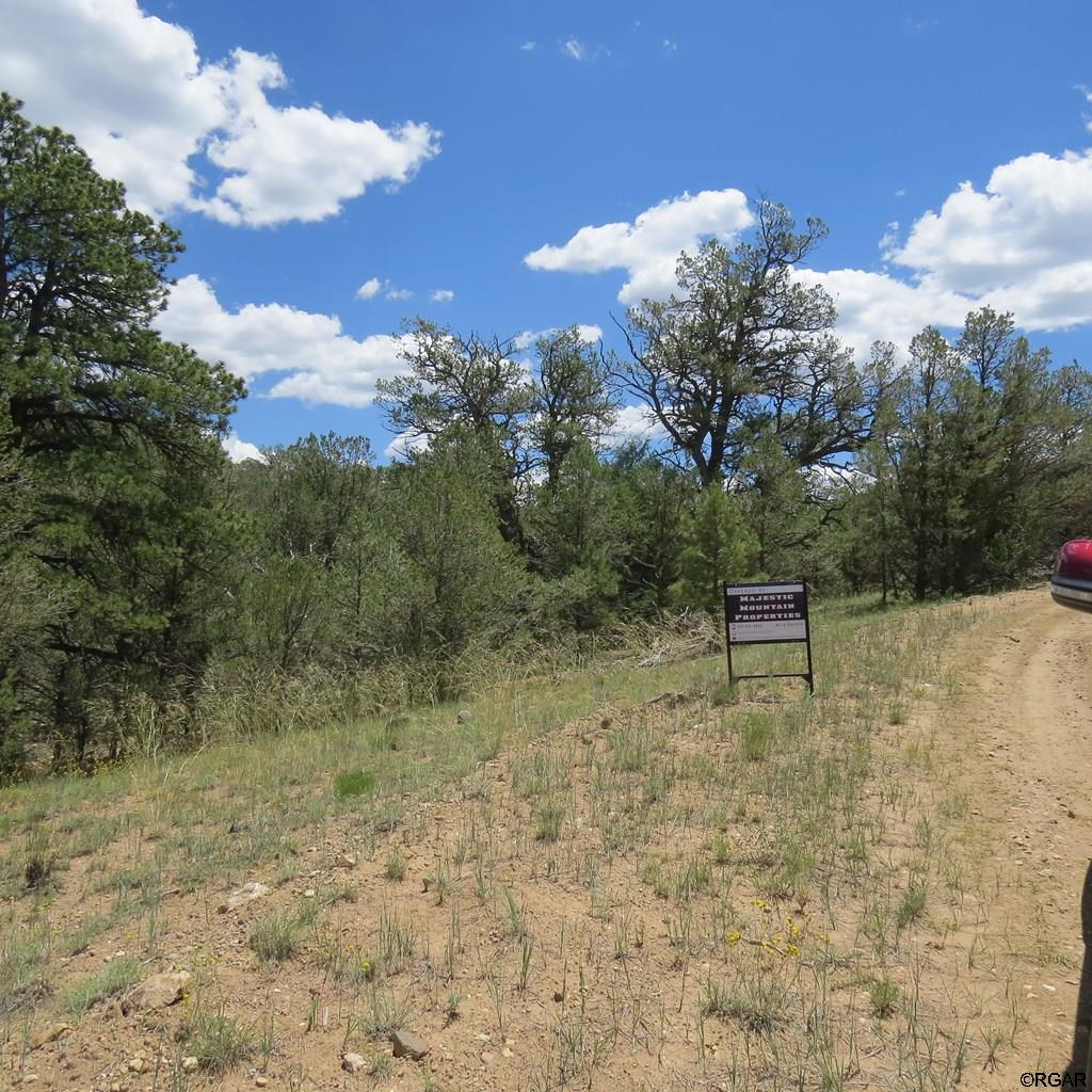 MLS# 61103 - 15 - TBD Holmes Road  #Lot 5, Cotopaxi, CO 81223
