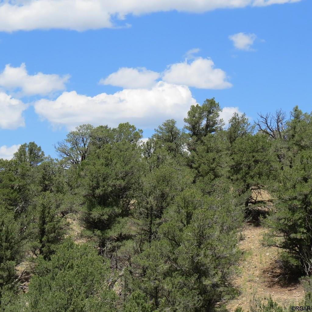 MLS# 61103 - 5 - TBD Holmes Road  #Lot 5, Cotopaxi, CO 81223