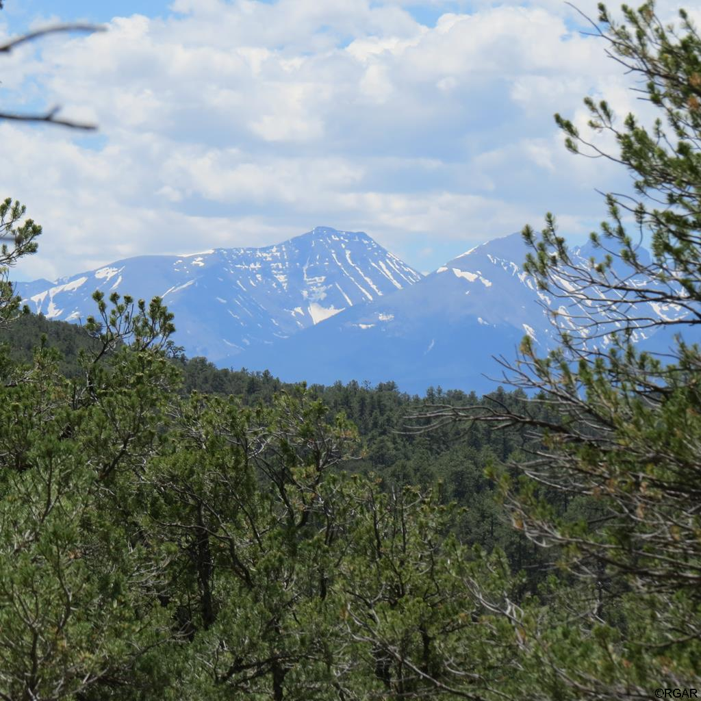 MLS# 61104 - 1 - TBD 4&5 Holmes Road  #LOT4&5, Cotopaxi, CO 81223