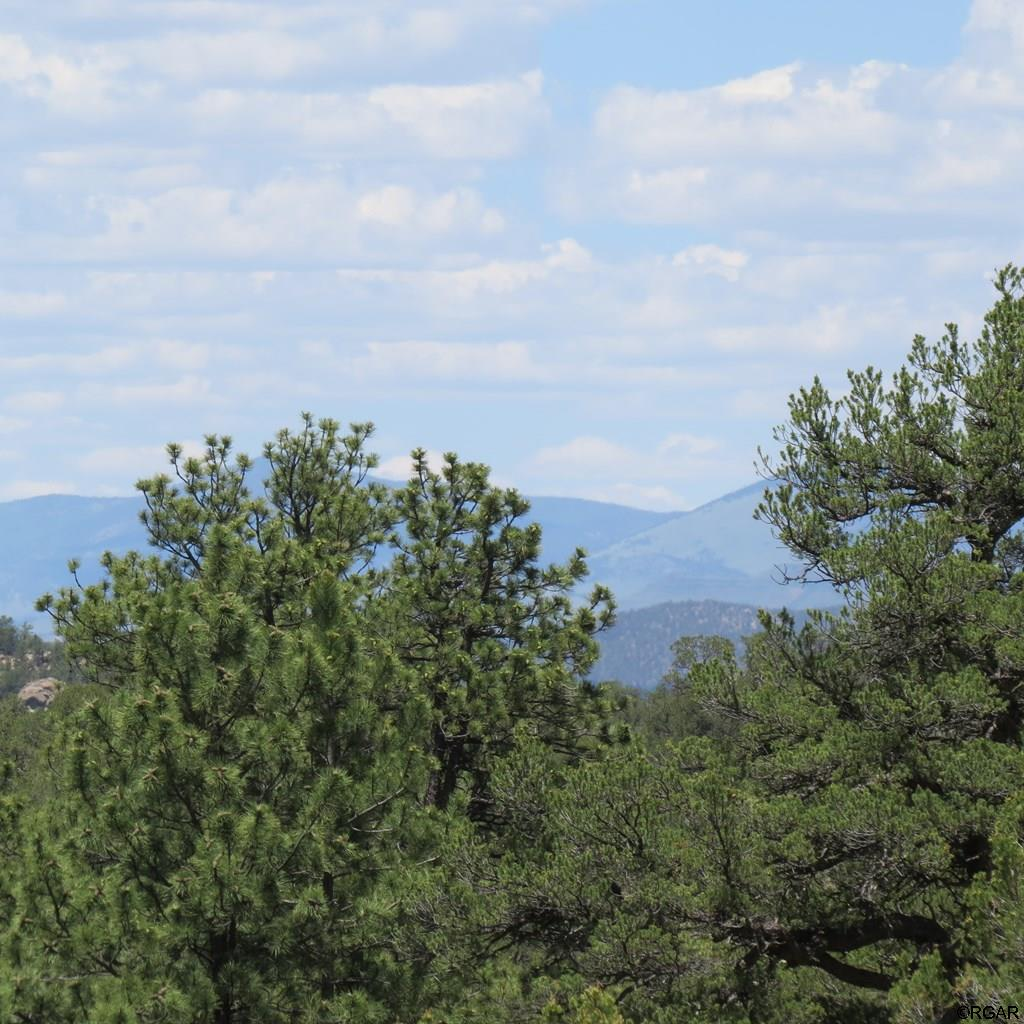 MLS# 61104 - 2 - TBD 4&5 Holmes Road  #LOT4&5, Cotopaxi, CO 81223