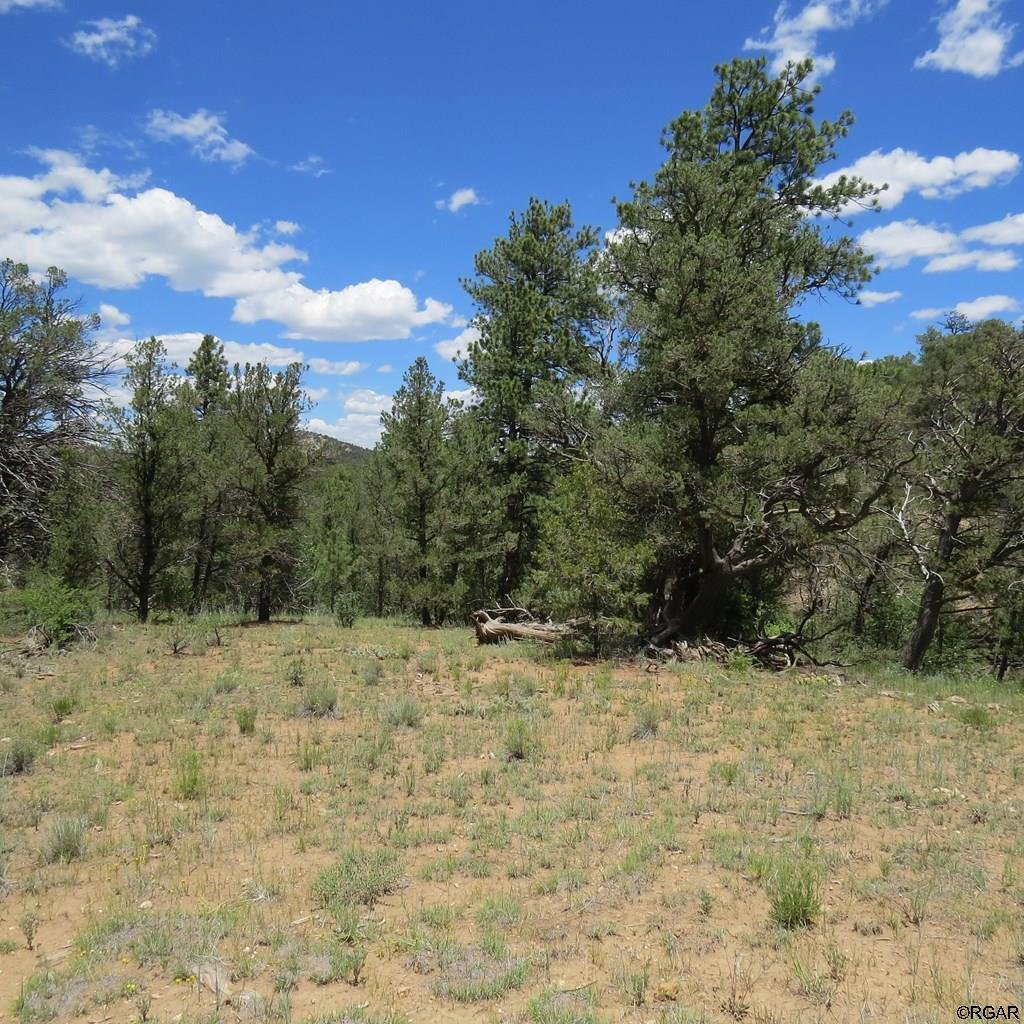 MLS# 61104 - 5 - TBD 4&5 Holmes Road  #LOT4&5, Cotopaxi, CO 81223
