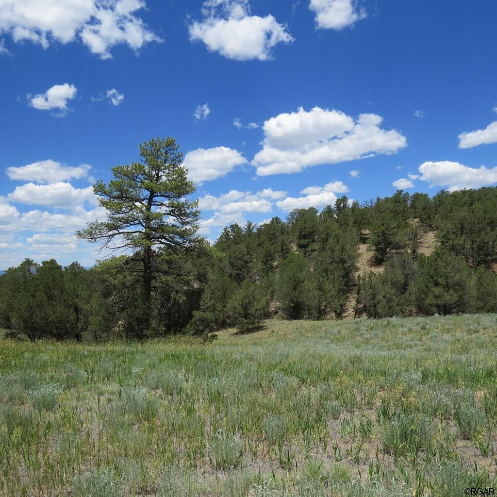 MLS# 61104 - 6 - TBD 4&5 Holmes Road  #LOT4&5, Cotopaxi, CO 81223