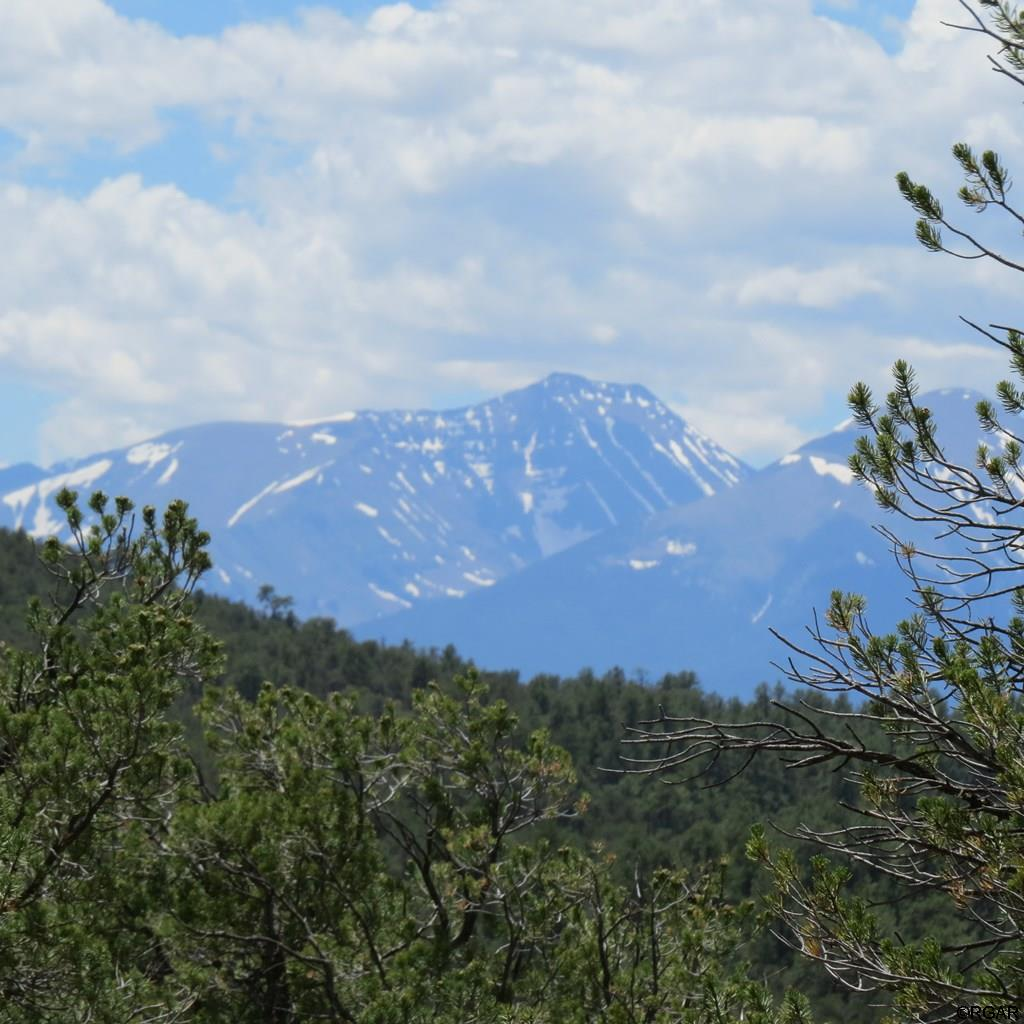 MLS# 61104 - 8 - TBD 4&5 Holmes Road  #LOT4&5, Cotopaxi, CO 81223