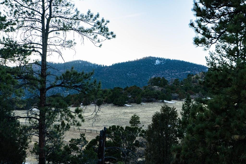 MLS# 61888 - 18 - 2853 Bird Point Drive , Cotopaxi, CO 81223