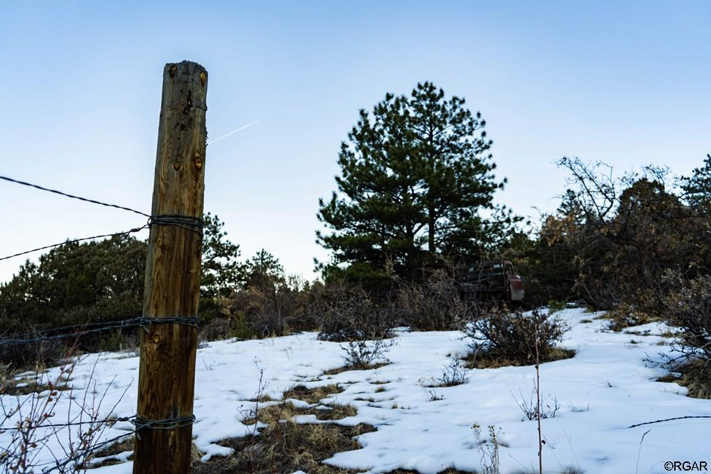 MLS# 61888 - 19 - 2853 Bird Point Drive , Cotopaxi, CO 81223