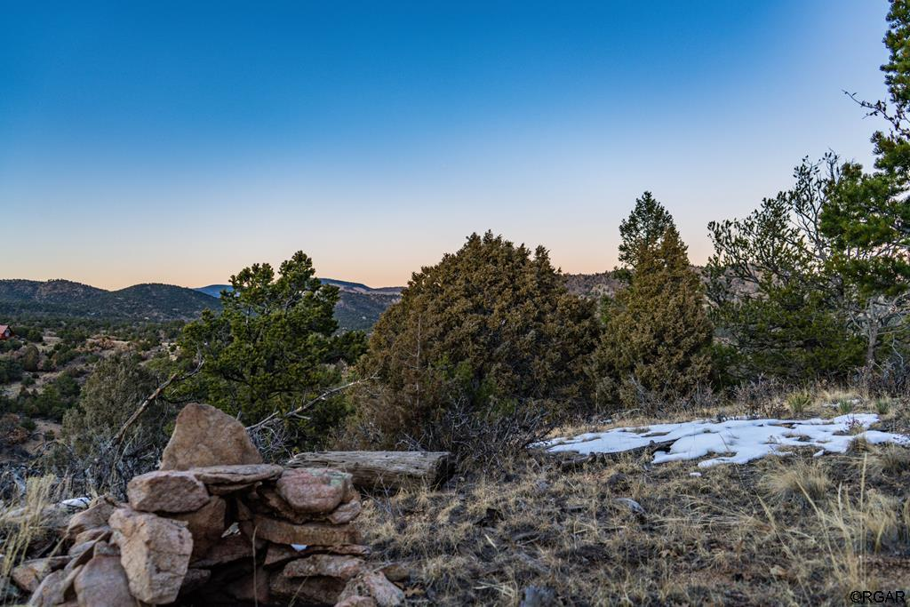 MLS# 61888 - 2 - 2853 Bird Point Drive , Cotopaxi, CO 81223