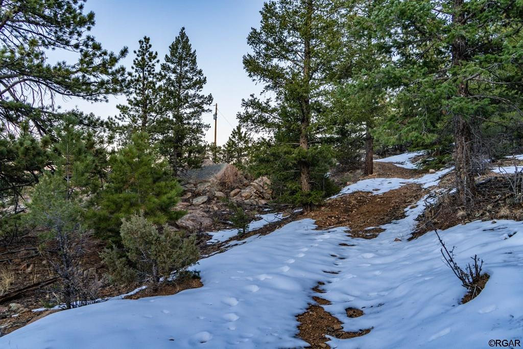 MLS# 61888 - 23 - 2853 Bird Point Drive , Cotopaxi, CO 81223