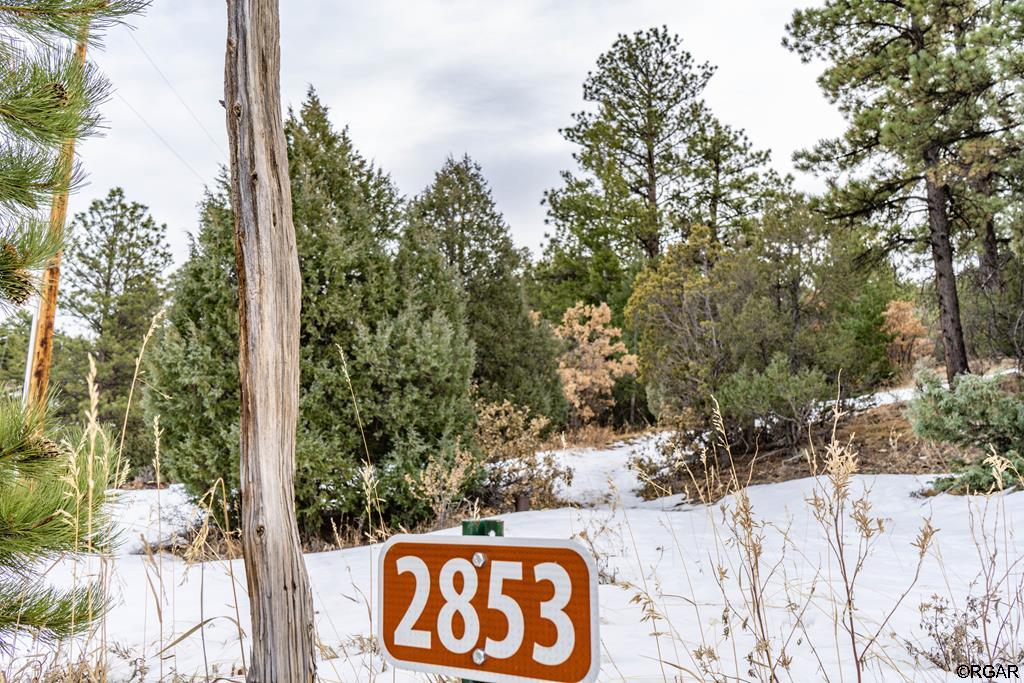 MLS# 61888 - 3 - 2853 Bird Point Drive , Cotopaxi, CO 81223