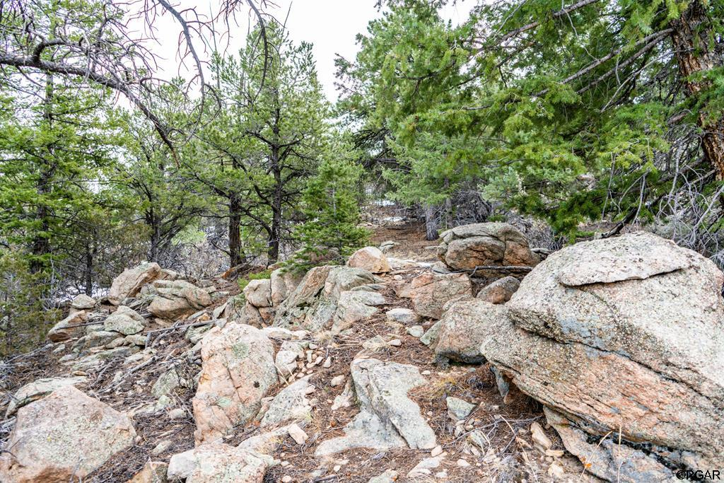 MLS# 61888 - 5 - 2853 Bird Point Drive , Cotopaxi, CO 81223